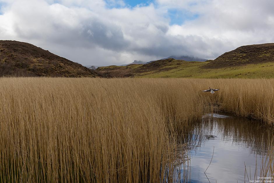W_5553-J7_Loch-Dunvegan