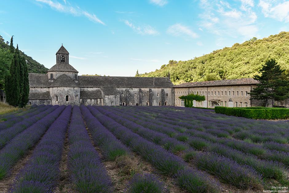 senanque-abbaye-lavande-champ